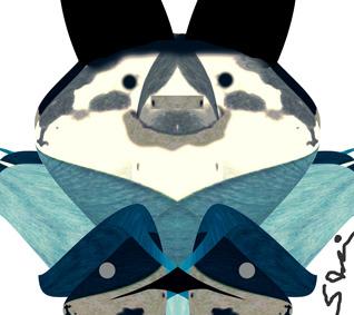 damashie illustrator 31.jpg