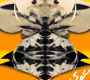damashie illustrator 77.jpg